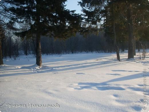 Шишки раскрасила уже давно,собиралась прикрепить их на белые прутики и собрать в рождественский венок,но времени не хватило. фото 26
