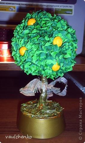 Пусть это деревце принесет удачу и радость! фото 6