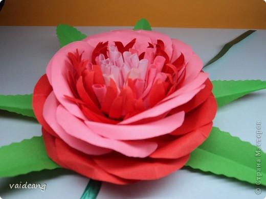 Все хотела сделать цветок с узкими лепестками в середине -вот что вышло(названия пока не придумала) фото 1