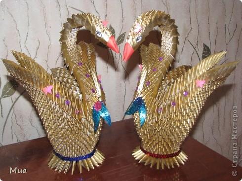 Лебеди в подарок фото 5