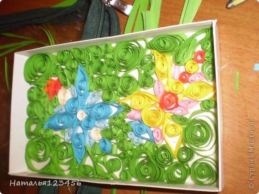 Бабочки на поле))