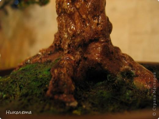 Давно хотела сделать бисерное дерево, насмотревшись на прекрасные работы мастериц, вот что вышло. Это мой первый опыт в бисероплетении. фото 3