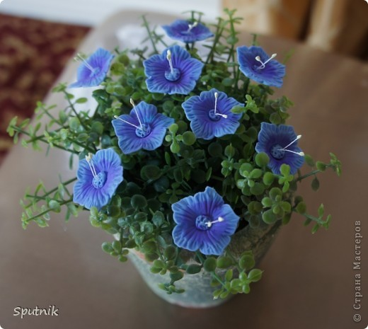 Цветики фото 1