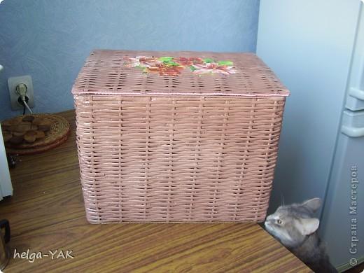 Этот вместительный короб для припасов (крупа,макароны и пр.) сплела моя сестра и подарила мне. Это её первая большая плетёнка.В основе картонная коробка. фото 5
