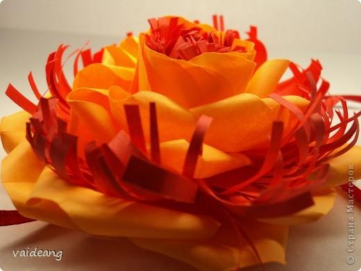 Цветок 2 фото 2