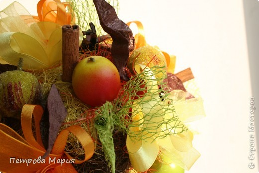 Мандариновое дерево фото 10