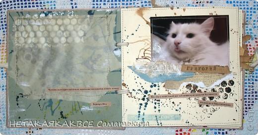 Альбом про кота! фото 2