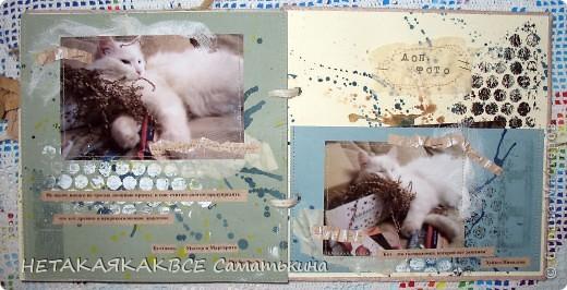 Альбом про кота! фото 6