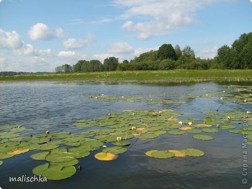 Мои родные края - озеро Селигер. фото 7