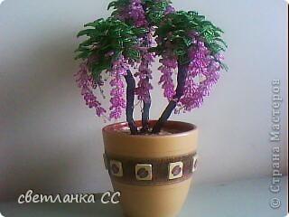 фантазия иногда выдает такие деревья которым я и названия то не знаю :-)