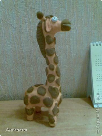 это мой жирафик фото 4