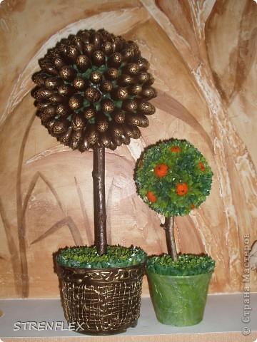 Это римейк первого моего апельсиновенького деревца.http://stranamasterov.ru/node/74242 После первого всем моим незамужним подругам срочно понадобились такие деревья. Вот пришел черед первой из них. Дерево уже подарено на день рождения! Именинница страшно довольна. фото 9