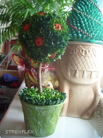 Это римейк первого моего апельсиновенького деревца.http://stranamasterov.ru/node/74242 После первого всем моим незамужним подругам срочно понадобились такие деревья. Вот пришел черед первой из них. Дерево уже подарено на день рождения! Именинница страшно довольна. фото 8