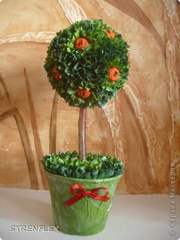 Это римейк первого моего апельсиновенького деревца.http://stranamasterov.ru/node/74242 После первого всем моим незамужним подругам срочно понадобились такие деревья. Вот пришел черед первой из них. Дерево уже подарено на день рождения! Именинница страшно довольна. фото 1
