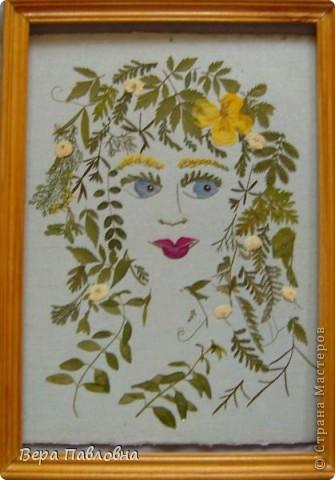 Приворотные травы Работа выполнена из листочков и лепестков.Нарисованного ничего нет. Форма глаз, носа и рта - стебельки донника без цветов. Брови - Донник с цветами. Голубой цвет глаз - виола.Реснички - лепестки тысячелистника. Красные губы - лепестки цветов (уже не помню каких). фото 1