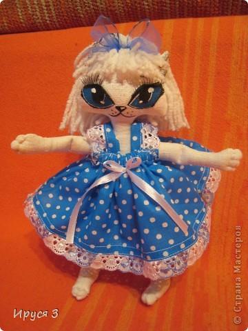 Кошечка Синеглазка фото 1