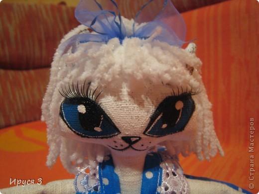Кошечка Синеглазка фото 7