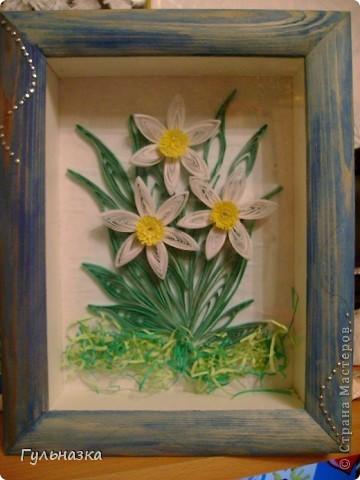 Нарциссы. это самая первая работа. фото 1