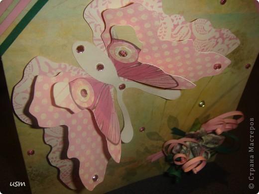Бабочка. фото 4