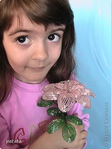 Цветочный бум (9 фото) фото 9