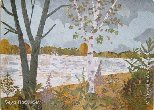 Березы В работе использованы осенние листья, кусочки бересты и немного мелких цветов фото 2