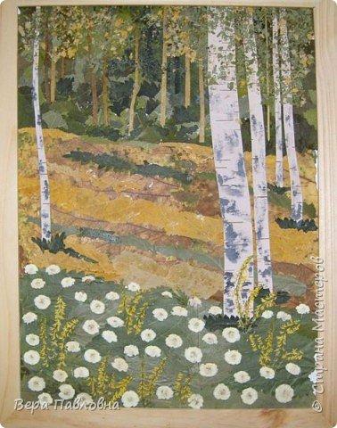 Березы В работе использованы осенние листья, кусочки бересты и немного мелких цветов фото 1