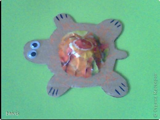 Черепашки (что-то типа детского папье-маше) фото 7