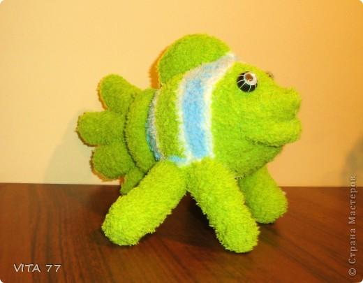 очередная рыбёшка  фото 4