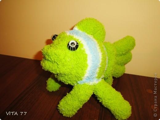 очередная рыбёшка  фото 2
