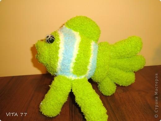 очередная рыбёшка  фото 3
