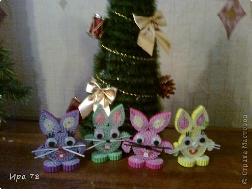 Вот и мои зайцы фото 1