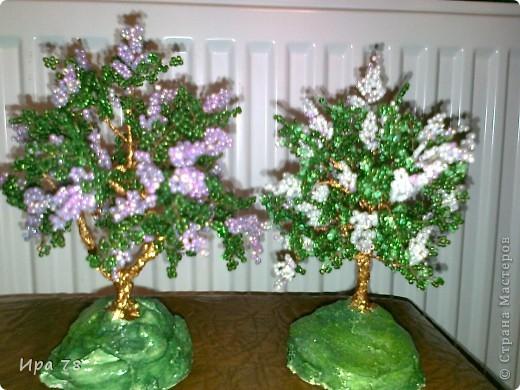 Бисероплетение - Деревья -3 из бисера.