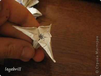 реалистичная лилия оригами фото 36
