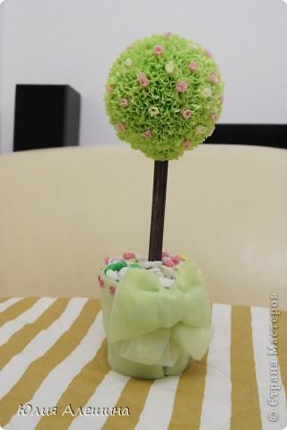 Весеннее деревце фото 7