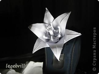 реалистичная лилия оригами фото 1