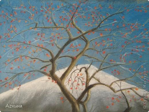 Это мой первый рисунок пастелью. Рисовала по самоучителю. фото 10