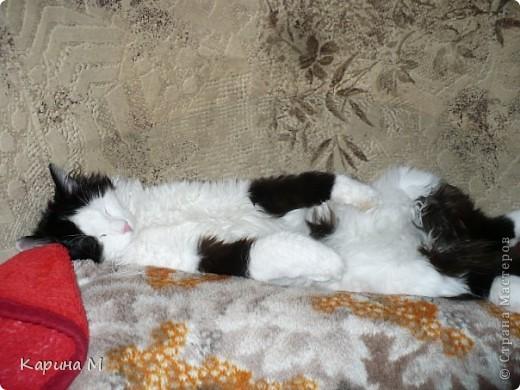 Знакомьтесь, я Анфиса. Родилась 10 ноября 2009 года))) фото 17