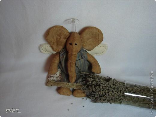 Слониха-щеголиха!!! фото 2