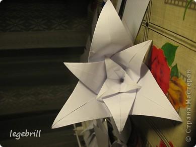 реалистичная лилия оригами фото 57