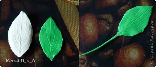 Сегодня я хочу «поговорить» о зелени к  букетам из цветов, которые мы лепим. Проблема еще та… То выбор слабоват, то цены кусаются. Я решила для себя в некотором роде эту проблему с помощью искусственных водорослей, который продаются в зоомагазине. Уверена, такая мысль приходила не только мне -  значит я её еще раз озвучу)))) фото 9