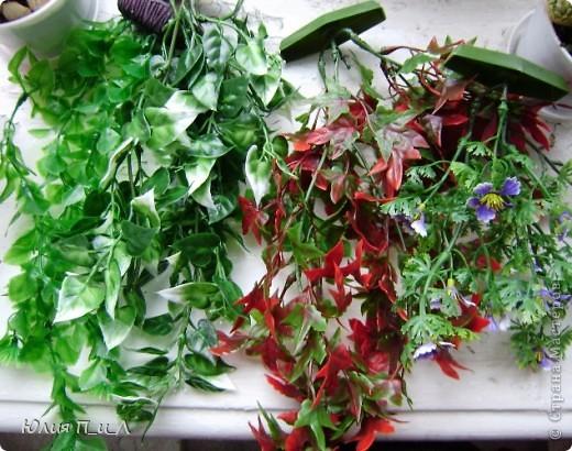 Сегодня я хочу «поговорить» о зелени к  букетам из цветов, которые мы лепим. Проблема еще та… То выбор слабоват, то цены кусаются. Я решила для себя в некотором роде эту проблему с помощью искусственных водорослей, который продаются в зоомагазине. Уверена, такая мысль приходила не только мне -  значит я её еще раз озвучу)))) фото 2