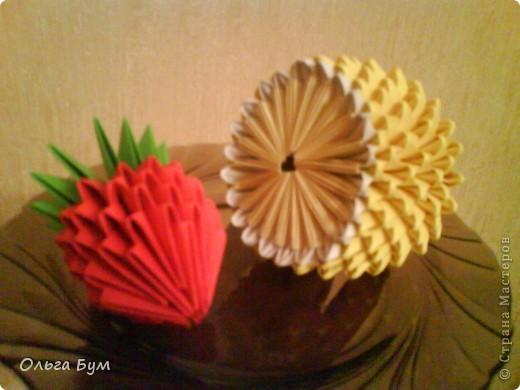 Вот и фрукты поспели! фото 1