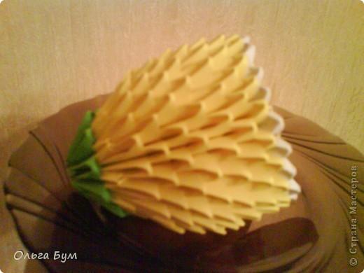 Вот и фрукты поспели! фото 5