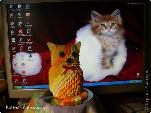 Котёночек фото 2