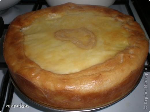 пирог с рыбой с рисом под сырной корочкой фото 1