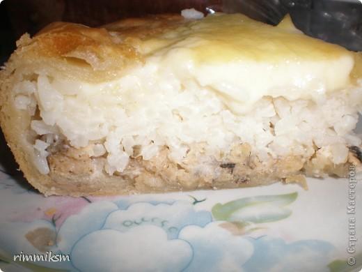 пирог с рыбой с рисом под сырной корочкой фото 2