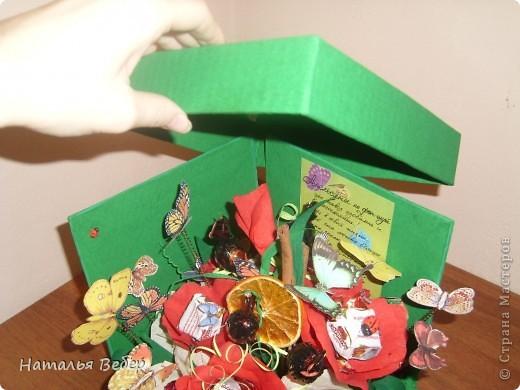 Вот такой подарок-сюрприз был создан для замечательной девушки Оли на её день рождения.  фото 5