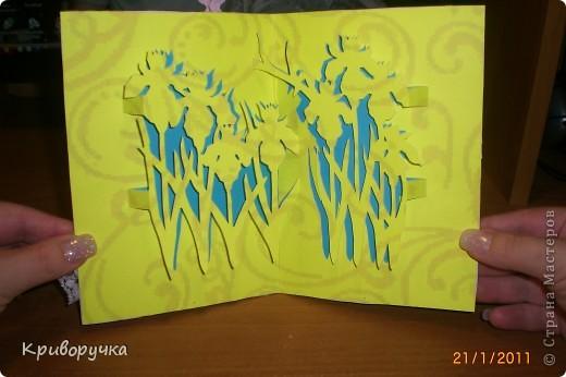 А это открыточка для моей свекрови. Она не много летняя, т.к уже прям ну очень хочется тепла и цветов!!! фото 2