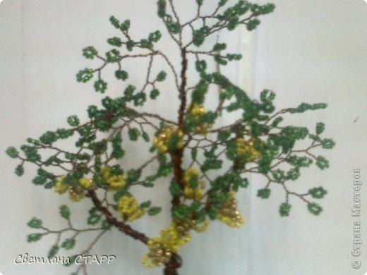 Вот такое деревце я сделала фото 2