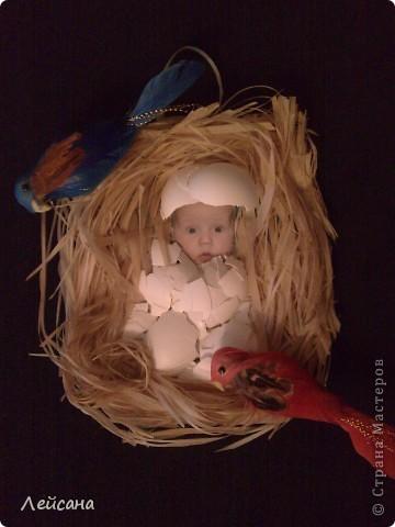 Сфотографировала младшенького в 3 месяца и у него такое выражение лица получилось, как будто бы вылупился из гнезда. Вот и решила сымпровизировать фото 1